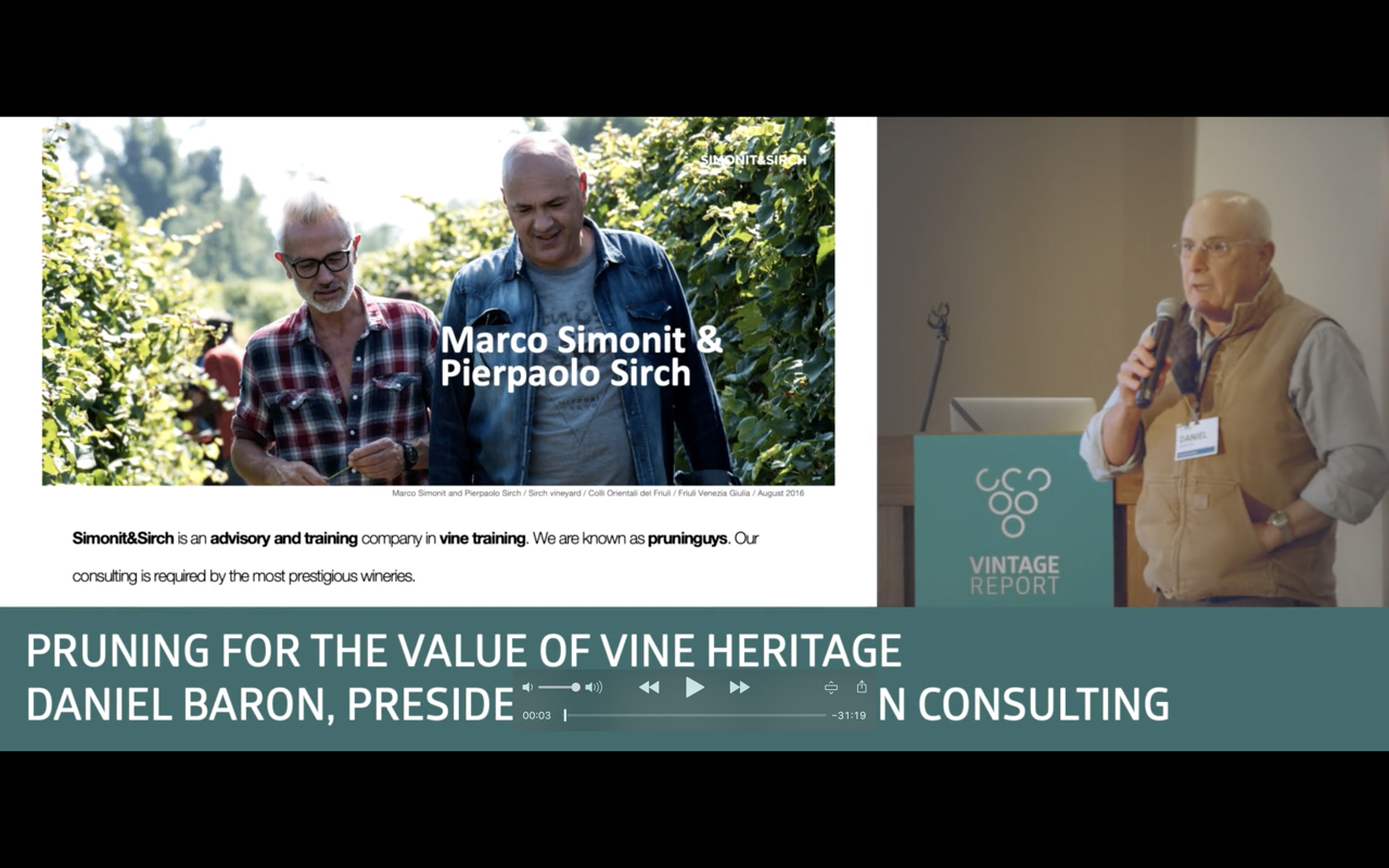 Sonoma 2018 - Daniel Baron - Pruning for the value of wine heritage