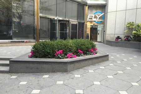 Preview image for Mini Plaza Ledges