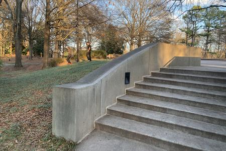 preview image for Carter Center 8 Stair Kinked Hubba