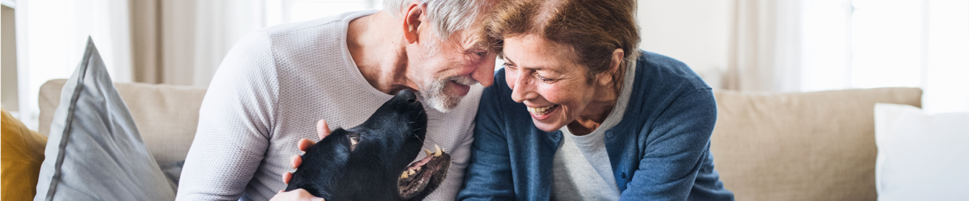 A senior man and a senior woman sit on the couch and pet a black dog