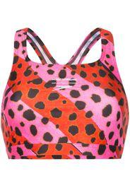 cheetah stripe bralet bikini top