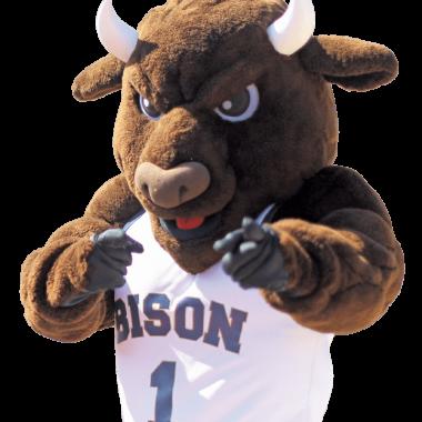 GU Bison