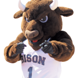 Gallaudet's Bison mascot pointing at you.