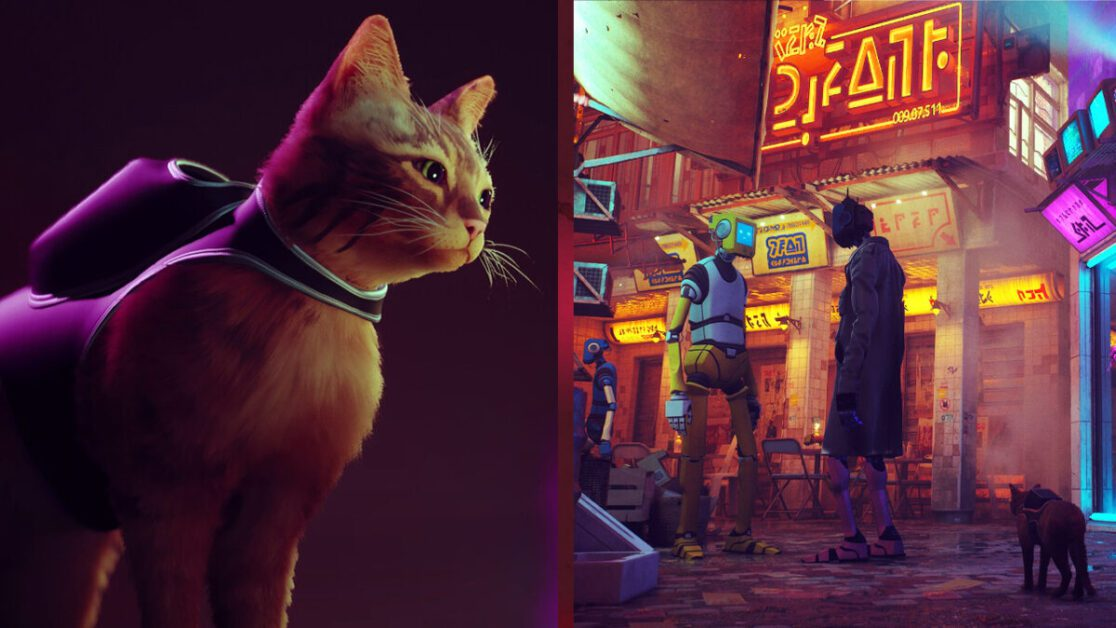 'Stray', The Cyberpunk Cat Adventure, Has Been Delayed To 2022