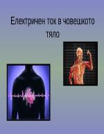 Електричен ток в човешкото тяло