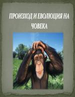 Произход и Еволюция на човека