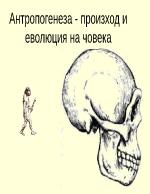 Антропогенеза - произход и еволюция на човека