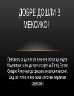 Стопанство на Мексико