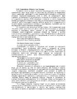 ПП Славейков- Образът на Ралица