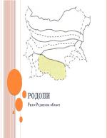 Рило-Родопска област