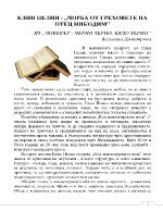 Чорба от греховете на отец Никодим - Елин Пелин