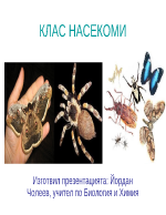 Клас насекоми