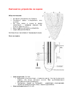 Анатомия на корена