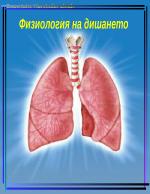 Дишането като процес