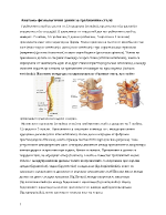 Травматични увреждания на гръбначния стълб