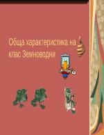 Клас Земноводни