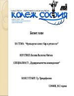 Бизнес план на фризьорски салон в град София