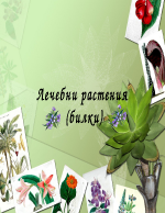 Лечебни растения билки