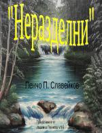 Неразделни П Славейков - анализ