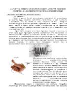 Магнитни вериги в електрическите апарати Основни свойства на магнитните вериги Класификация