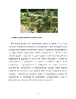 Бизнес план за стартиране на ферма за кактуси