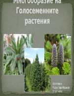 Голосеменни растения