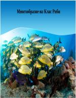 Многообразие на клас риби