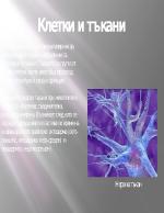 Клетки и тъкани