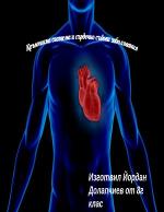 Сърдечно съдова система и сърдечни заболявания