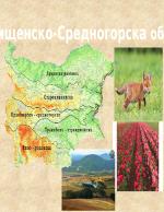 Краищенско-Средногорска област