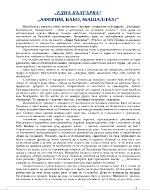 Една Българка - съчинение разсъждение
