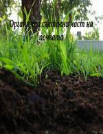 Органична съставна част на почвата
