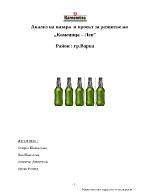 Анализ на пазара и проект за развитие на Каменица Лев Район грВарна