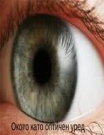 Окото като оптичен уред