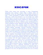 Косачи - Елин Пелин подробен преразказ