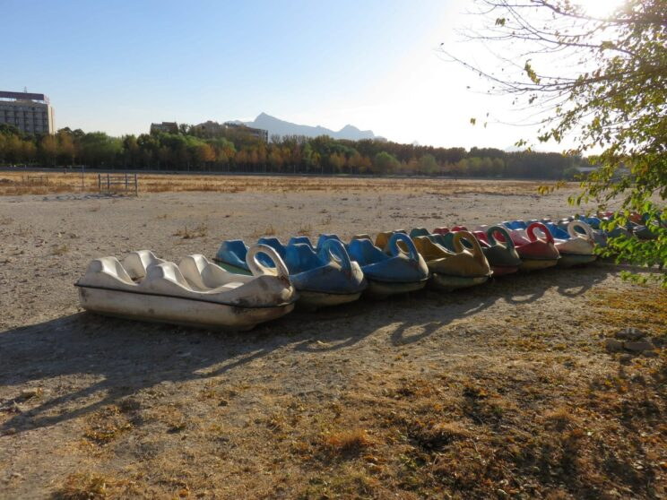 Swan Boats on the Zayandeh River