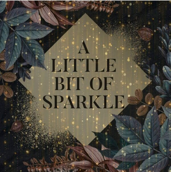 A Little bit of sparkle shop logo