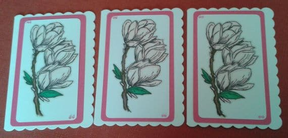 Poppies & Magnolia Handmade Notecards or Blank Cards – Set of 6 - product image 2