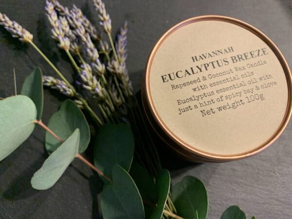 Eucalyptus Breeze rapeseed and coconut wax candle - product image 2