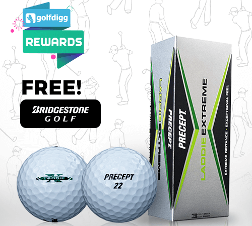 Golfdigg Reward 'Precept Laddie Extreme Golf Ball'