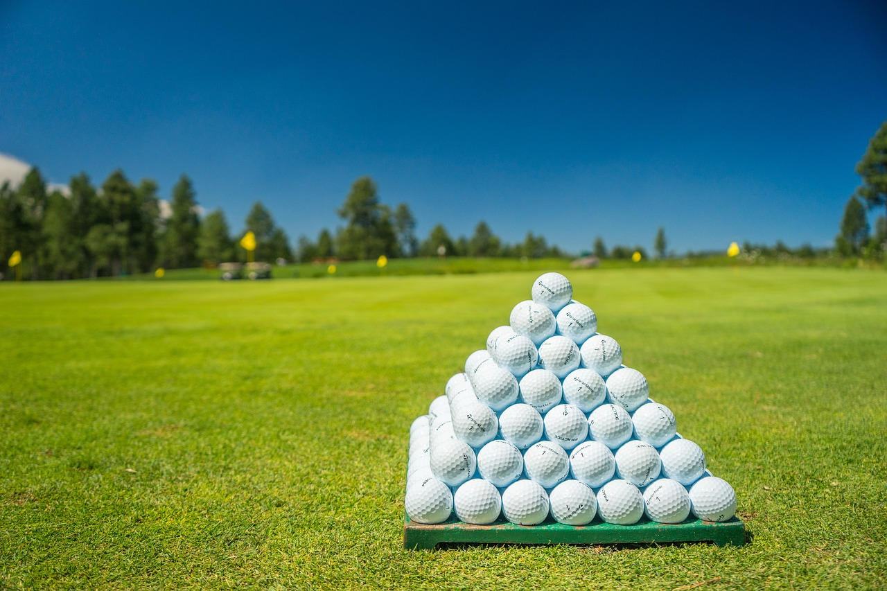 golfdigg_golfdiggTODAY_golfball