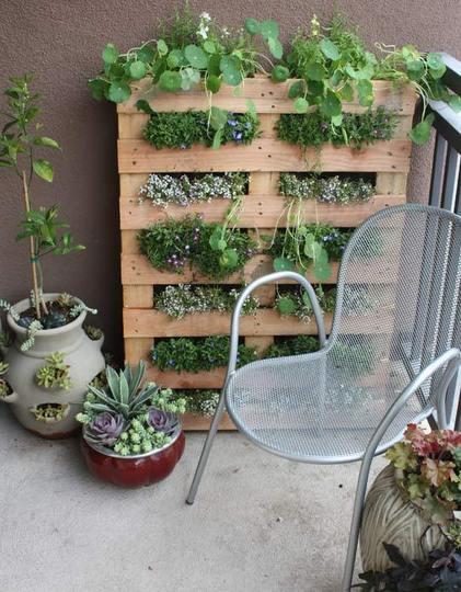 9 Patio Garden Ideas How To Grow
