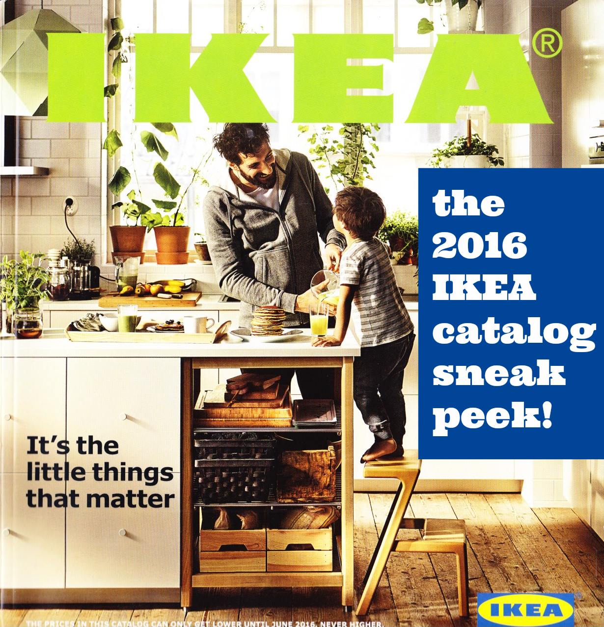 The Ikea 2016 Catalog Stylists Ideas Worth Stealing Apartment