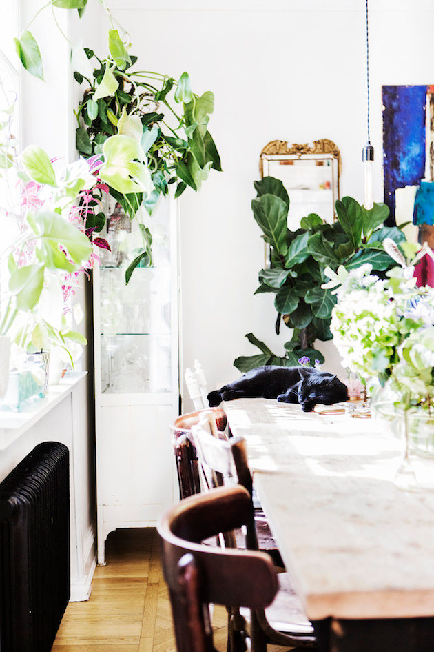 Your Daily Dose of Plant Porn: 5 Inspiring Homes that are Just Chock