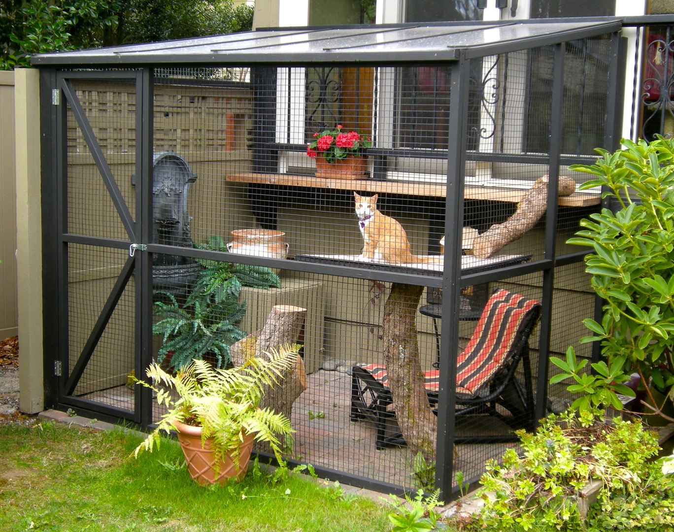 Phenomenal A Catio Is The Coolest Thing You Never Knew Your Cat Needed Home Interior And Landscaping Analalmasignezvosmurscom
