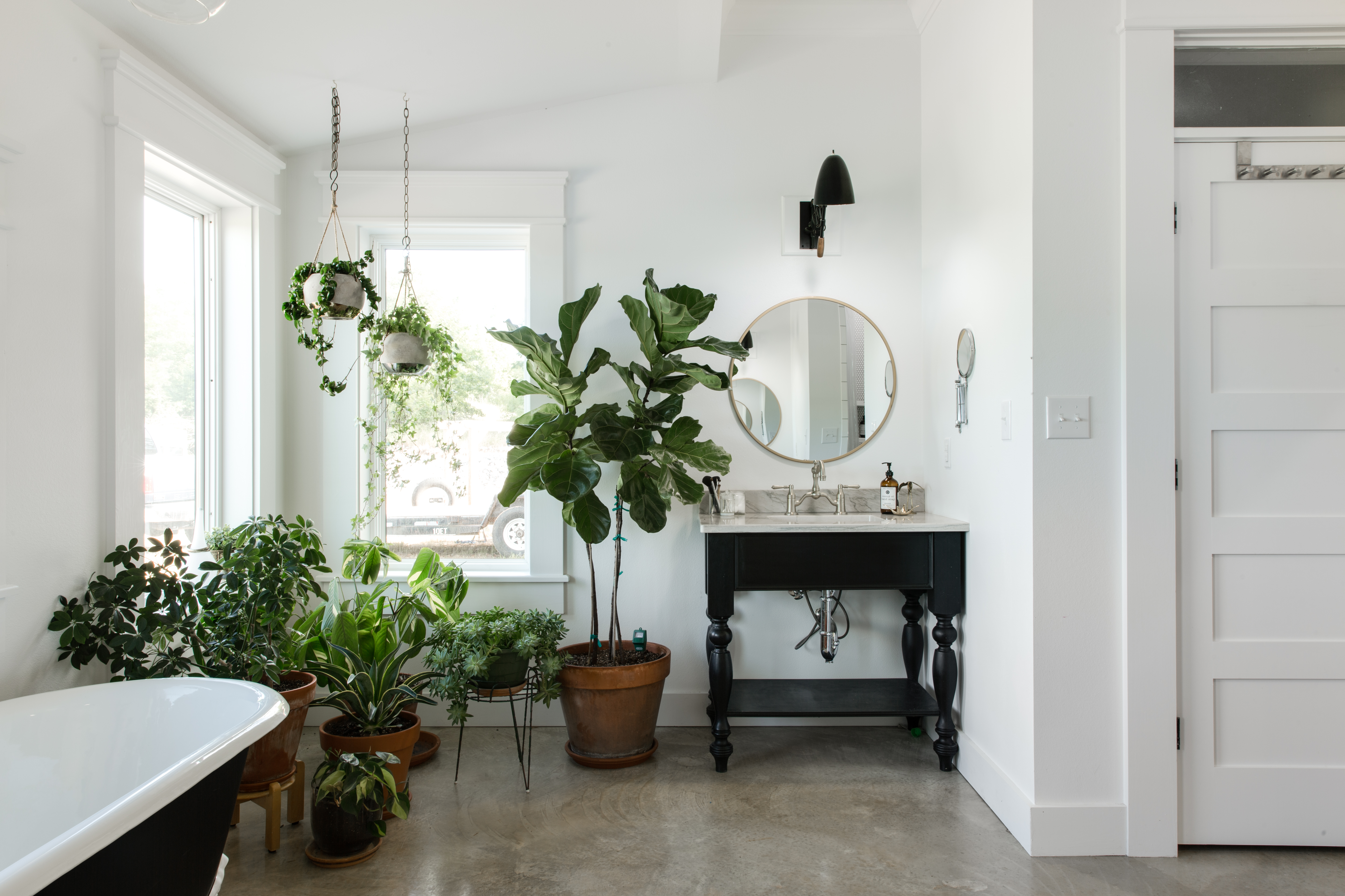 How to Take Care of Houseplants in the Winter: Our Top 10 ... House Plant Winter on winter fragrant plants, winter potted plants, winter deck plants, winter hibiscus, winter hardy plants, winter perennial plants, winter interest plants, winter patio plants, winter outdoor plants, winter container plants, winter flowering plants, winter house cookies, great winter plants, winter yard plants, winter porch plants, winter planter plants, winter house art, winter shade plants, winter blooming plants, winter house landscaping,