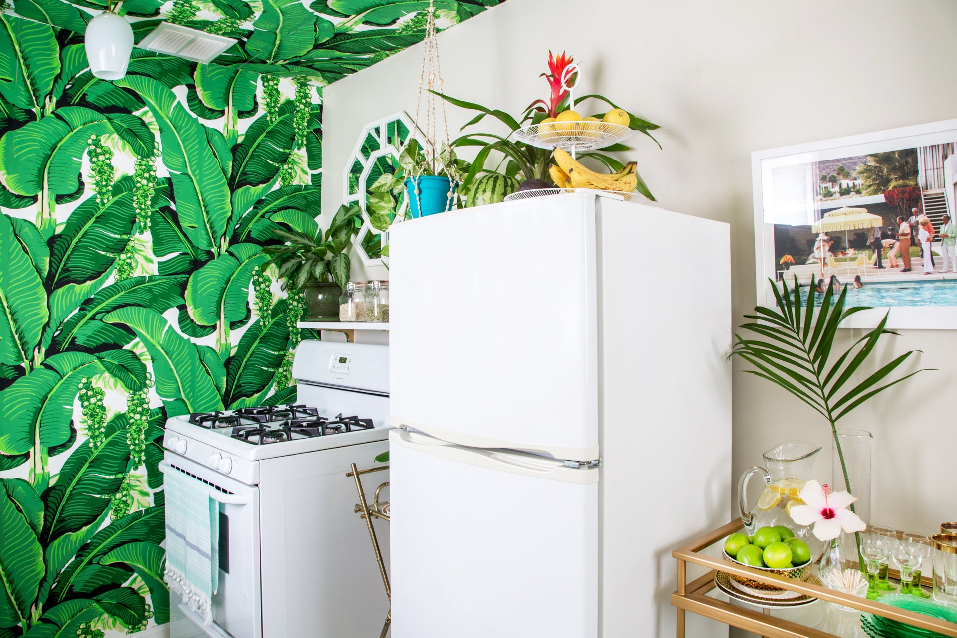 how & why to clean fridge coils (hint: you'll save money