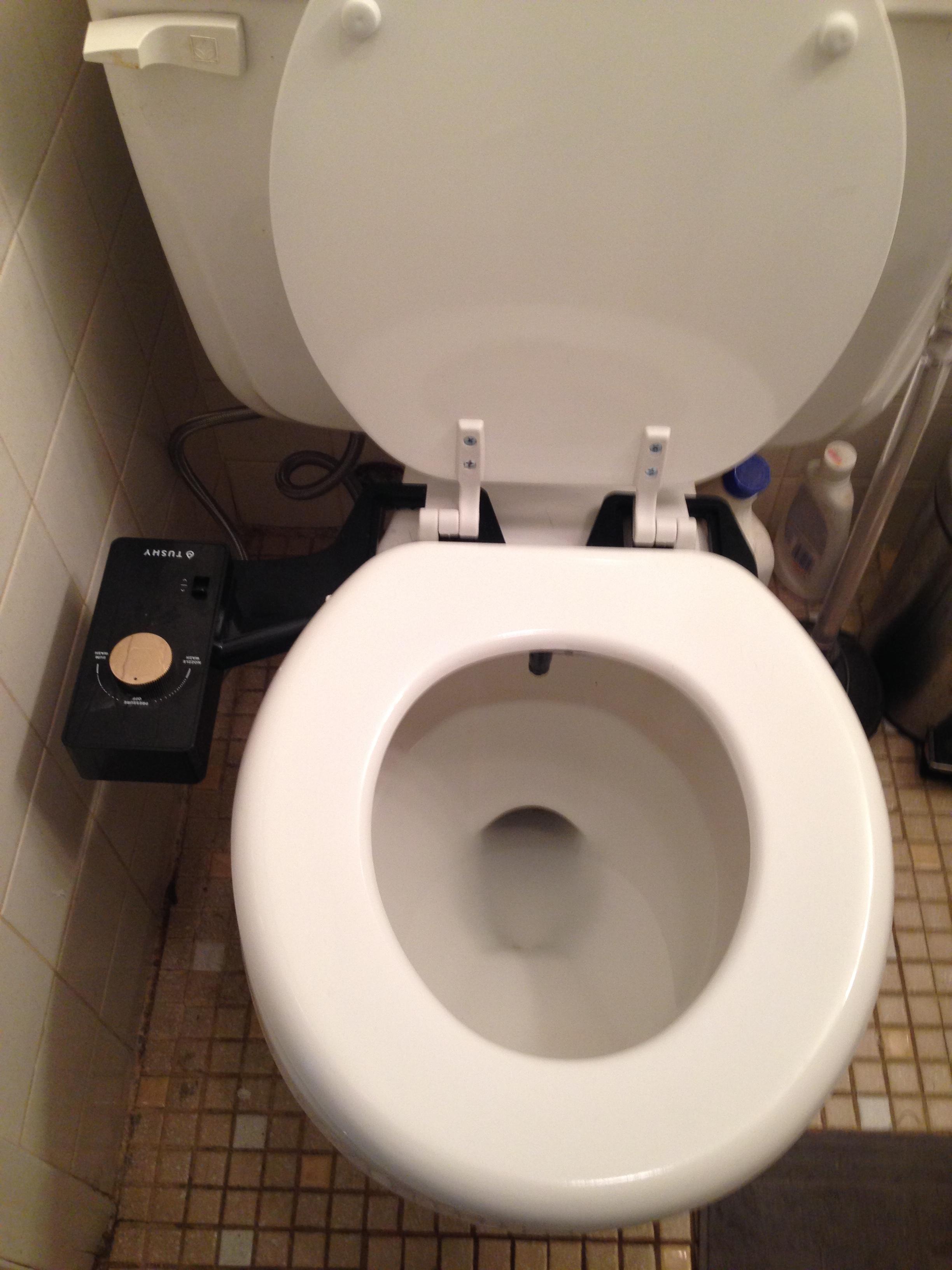 Fine Under 100 Toilet Seat Bidets Reviews Installation Info Ibusinesslaw Wood Chair Design Ideas Ibusinesslaworg