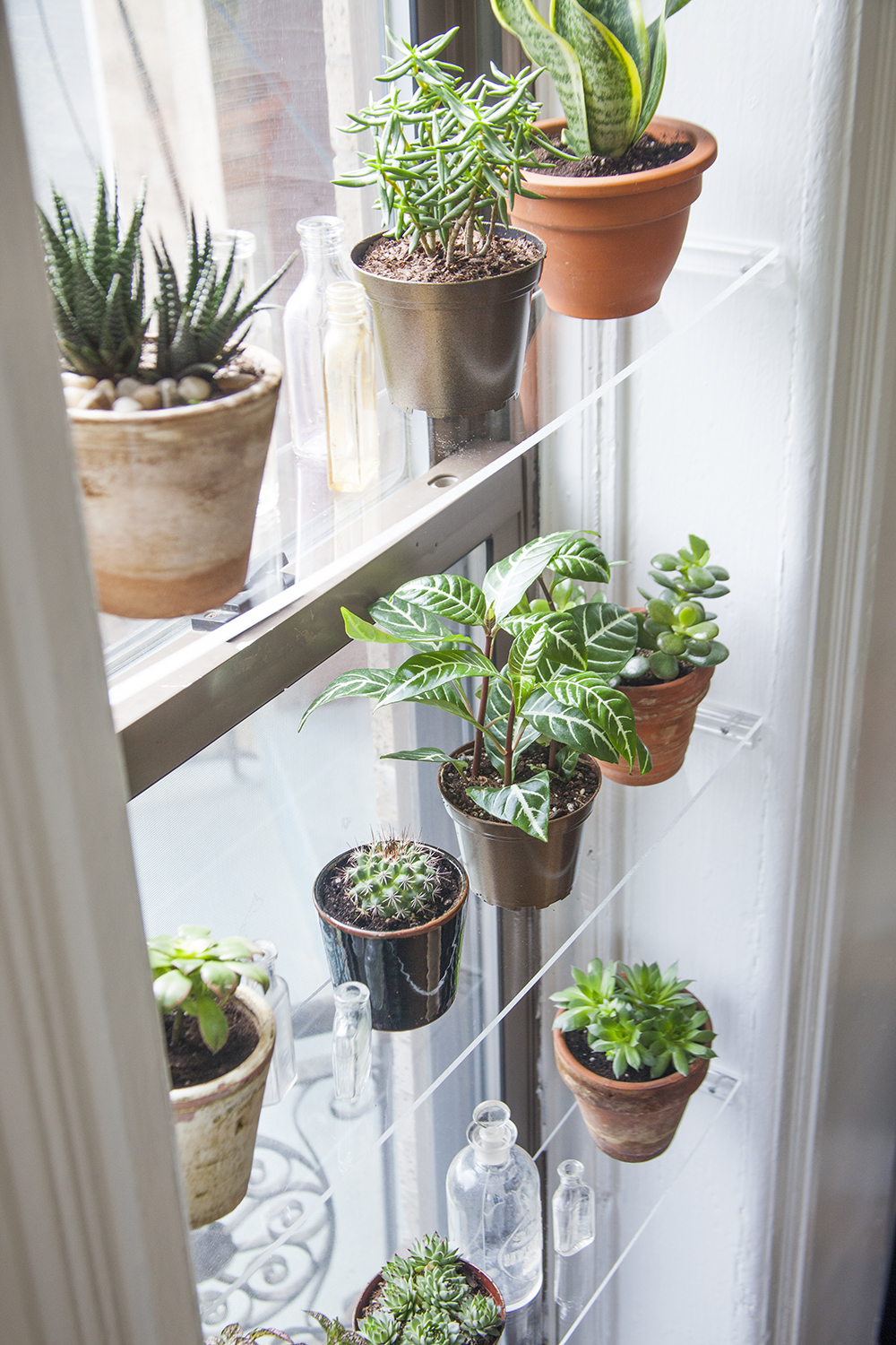 Indoor Garden Ideas - DIY Plant Holders | Apartment Therapy on home page ideas, home protection ideas, home pool ideas, home landscape ideas, home flower ideas, home technology ideas, home construction ideas, home lawn ideas, home rock ideas, home color ideas, home shop ideas, home park ideas, home project ideas, home summer ideas, home lighting ideas, home wall ideas, home fence ideas, home business ideas, home design ideas, home greenhouse ideas,