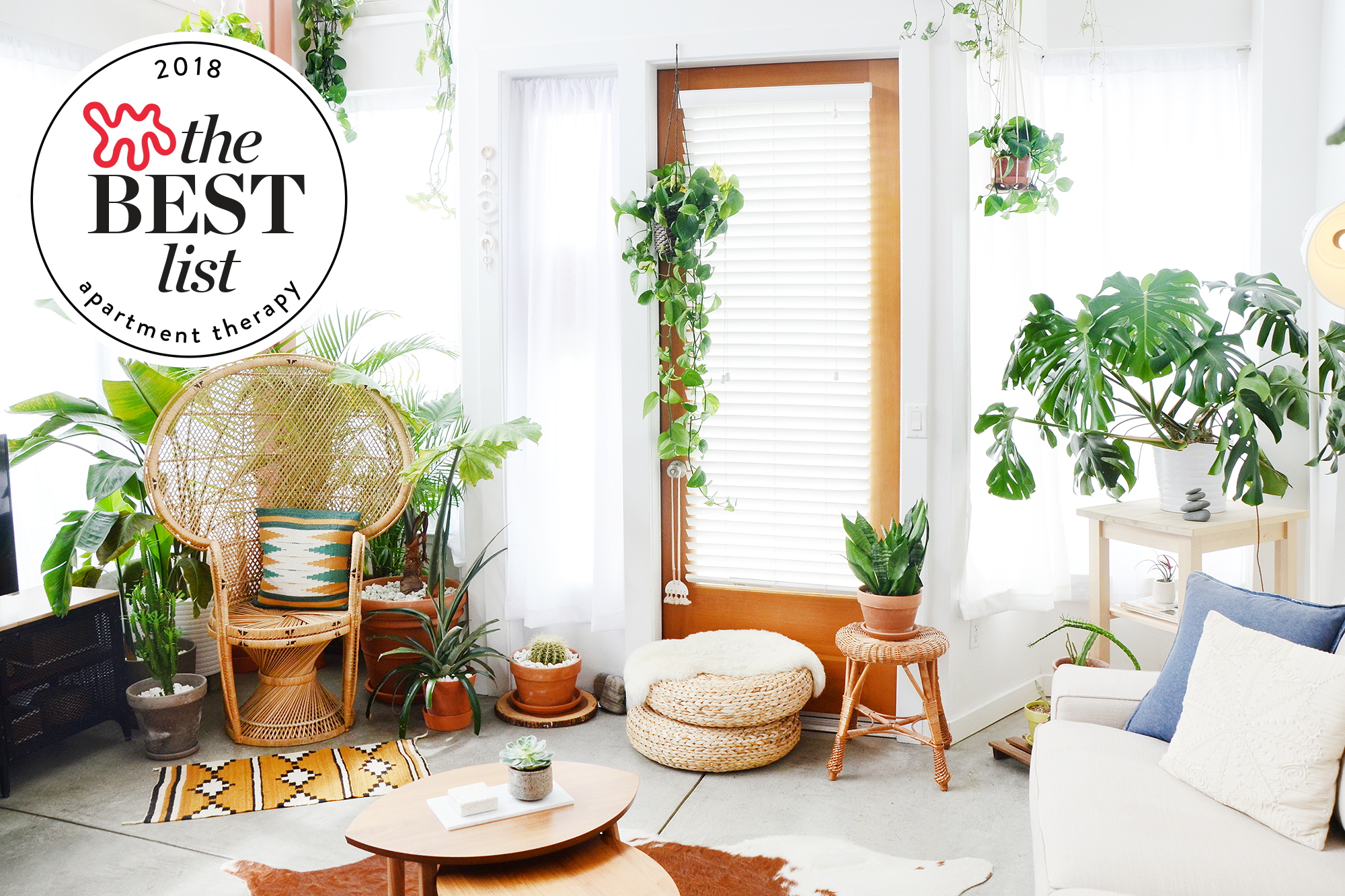 The Best Indoor House Plants Apartment Therapy